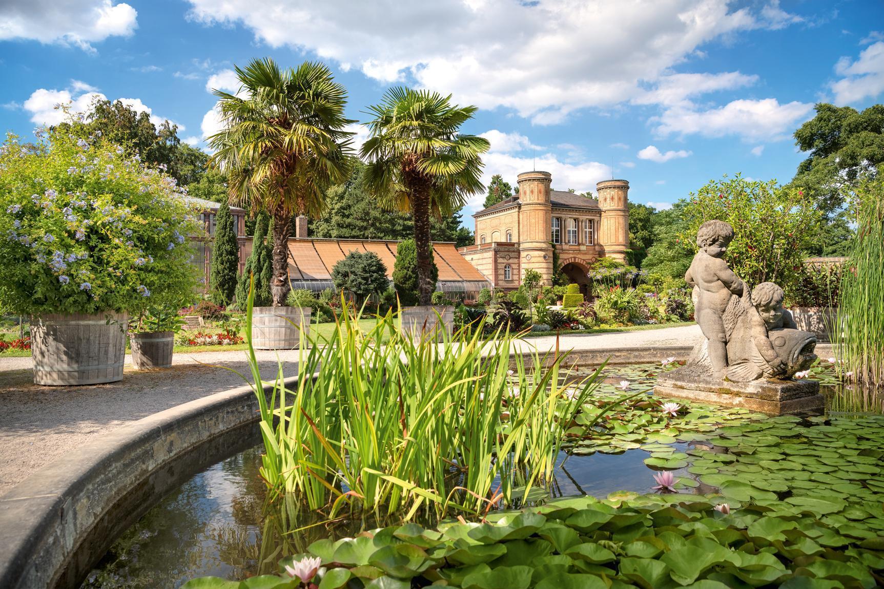 Jardin botanique de Karlsruhe, bassin dans le jardin