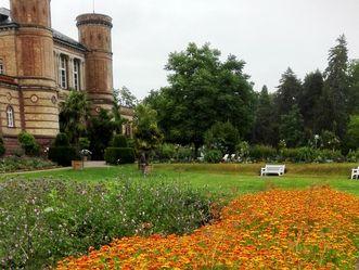 Botanischer Garten Karlsruhe, Ringelblumenbeet