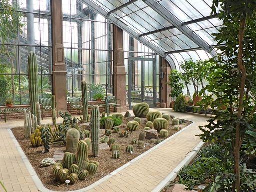 Botanischer Garten Karlsruhe, Kamelien- und Sukkulentenhaus