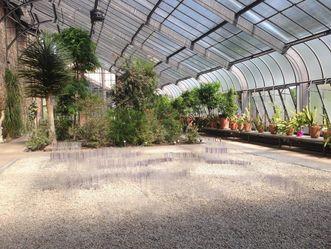 Botanischer Garten Karlsruhe, Sommerausstellung