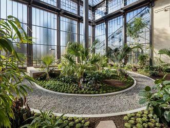 Karlsruhe Botanical Gardens, palm house. Image: Staatliche Schlösser und Gärten Baden-Württemberg, Dirk Altenkirch