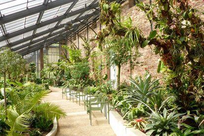Botanischer Garten Karlsruhe, Warm- oder Tropenhaus; Foto: Staatliche Schlösser und Gärten Baden-Württemberg, Günter Kromer