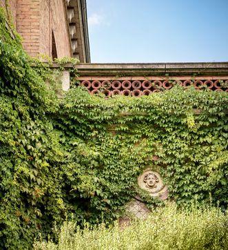 Jardin botanique de Karlsruhe
